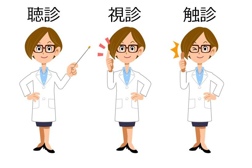 聴診、視診、触診