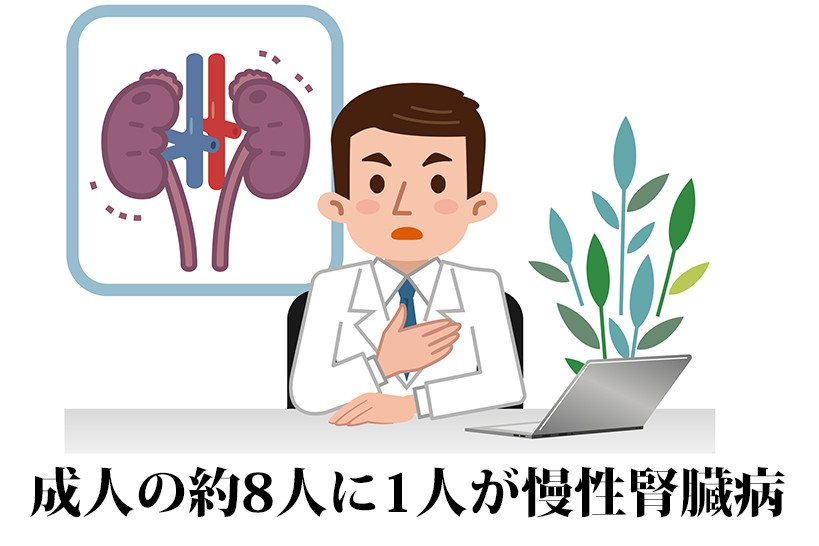 腎臓の負担を軽減するには栄養がカギ!?食事と運動療法の効果について解説します!