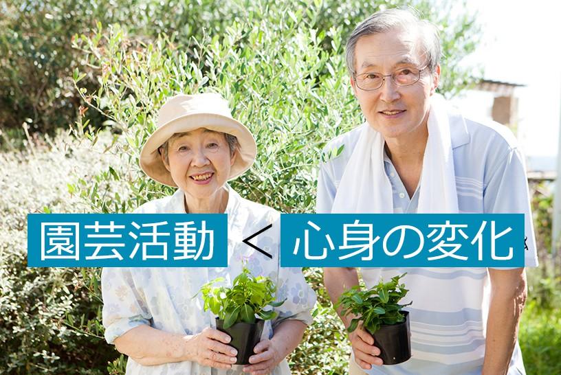 園芸療法ってどんな効果があるの?介護施設で高齢者の元気を引き出すアプローチ