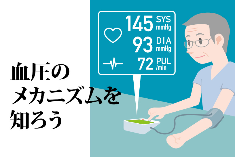 血圧はなぜ1日の間でも変動しやすい?そのメカニズムを知って、介護に生かそう!