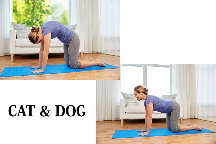 胸椎や肩甲帯のトレーニング