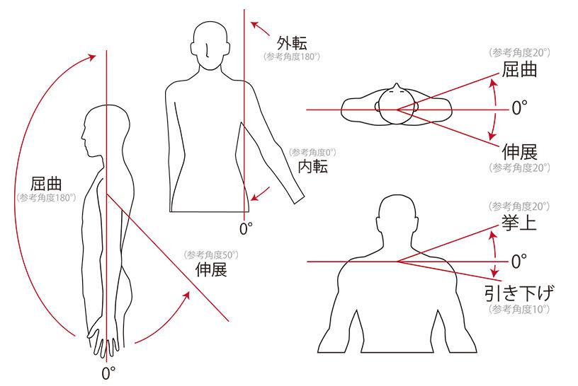 関節可動域の基本