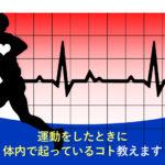 運動をしたときに体内で起っているコト教えます