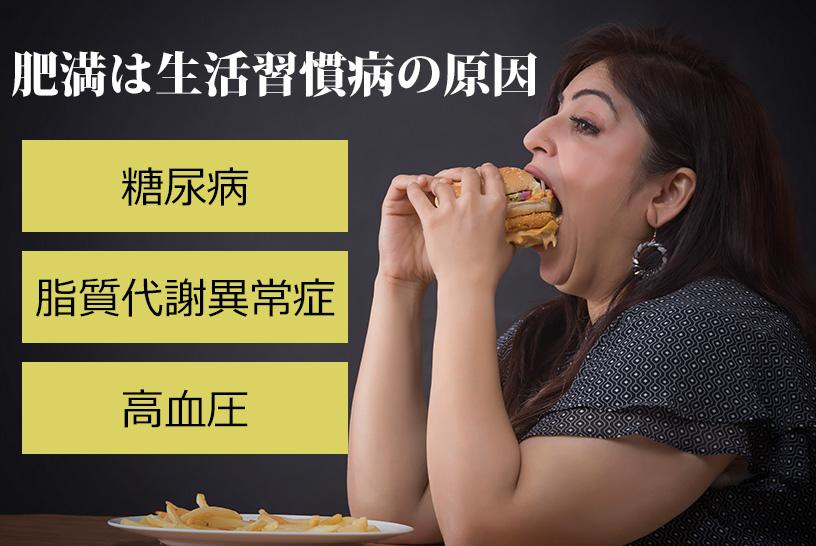 よく聞かれる食事の欧米化、成人病の可能性があるといわれているが具体的には?