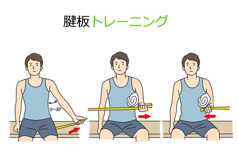 腱板トレーニング