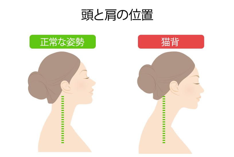 頭と肩の位置