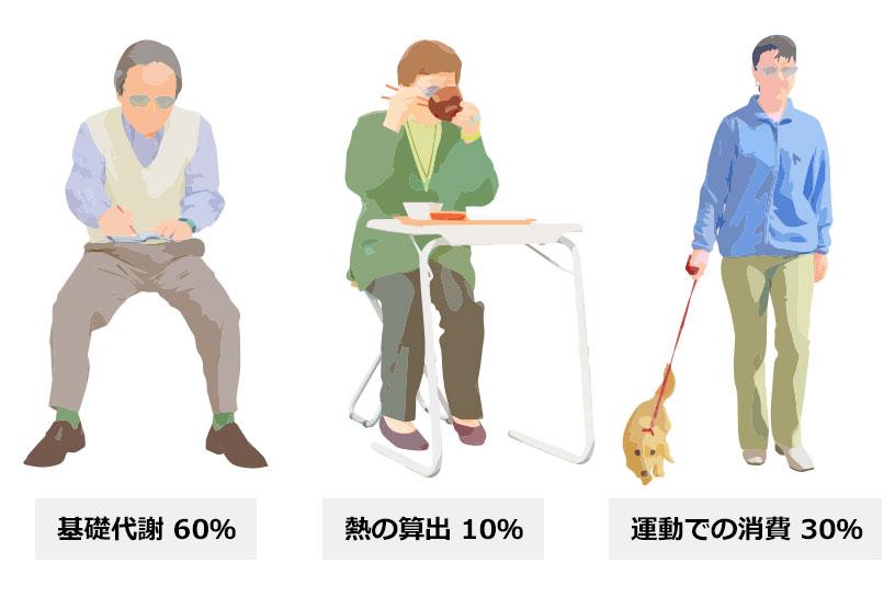 基礎代謝 60%,熱の算出 10%,運動での消費 30%