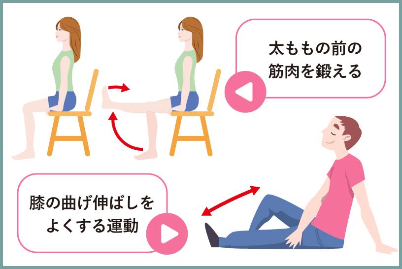 運動療法の一例